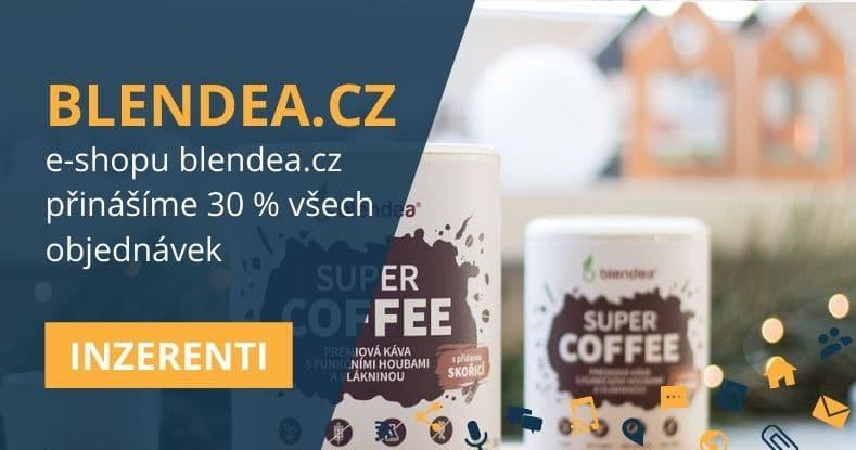 Blendea.cz case study (affiliate tvoří 30 %)