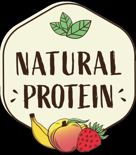 logo naturalprotein